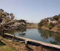 場 キャンプ 自然 くつ 池 公園 わ